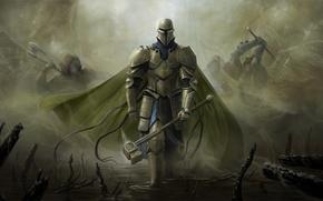 Picture weapons, swamp, wings, hammer, warrior, art, cloak, armor, enemies