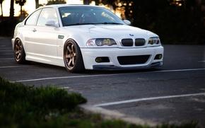 Picture white, grass, lawn, bmw, BMW, wolf, white, wheels, drives, parking, people, e46, Rakovka