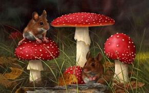 Wallpaper mushroom, grass, forest, art, mushroom, mouse, CARL ANDREW WHITFIELD