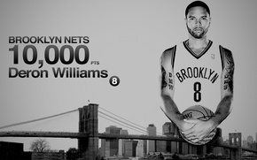 Picture Bridge, The city, Brooklyn, Basketball, Brooklyn, NBA, Nets, Player, Deron Williams, Deron Williams, Nets