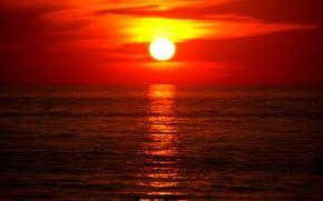 Picture sea, water, the sun, sunset, white, orange, cloud, yellow, al