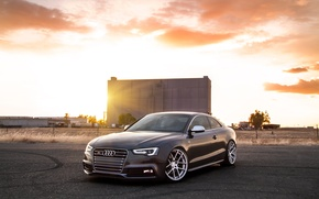 Picture Audi, Audi, coupe, sports car, front