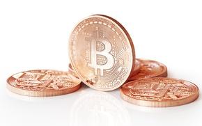 Picture golden, logo, coins, bitcoins
