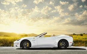 Picture field, the sky, the sun, white, Ferrari, white, Ferrari, Blik, California, profile