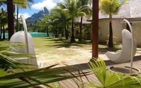 Picture tropics, palm trees, Polynesia, Bora Bora, the hotel, resort, exotic, Laguna
