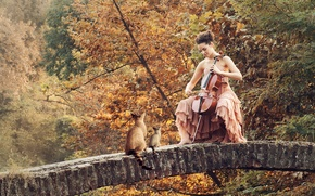 Picture girl, cats, bridge, music