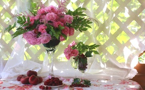 Wallpaper veranda, bouquet, peaches, roses, raspberry, still life, currants, summer