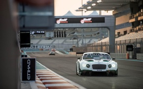 Picture Bentley, Continental, GT3, 2014