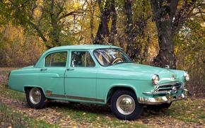 Picture background, classic, the front, Volga, GAS, GAZ, Volga, M-21