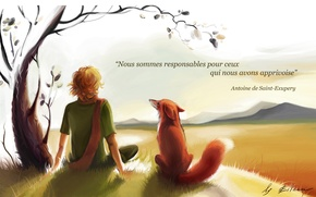 Picture boy, Fox, the little prince, the little Prince, Exupery