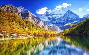 Picture forest, snow, mountains, nature, lake