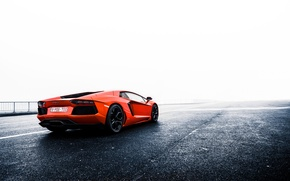 Picture orange, Lamborghini, Lamborghini, rear, orange, LP700-4, Aventador, aventador, LB834