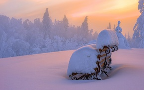 Picture winter, snow, landscape, sunset, bench