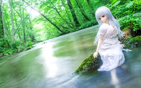 Picture summer, water, trees, river, doll, dress