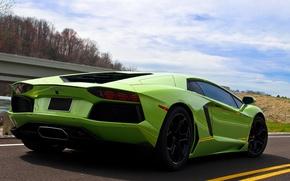 Picture road, the sky, green, back, LP700-4, aventador, Lamborghini Aventador
