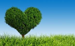 Picture love, tree, green, heart, love, field, heart, tree