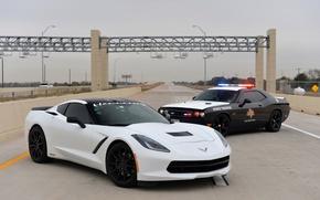 Picture Chevrolet, Dodge, Corvette Stingray, police car, hennesey, Challenger SRT
