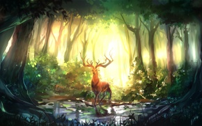 Picture forest, trees, nature, art, Deer