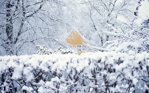 Picture winter, snow, trees, house, Norway, Oslo