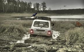 Picture forest, radiation, dirt, Chernobyl, helicopter, Raven, Stalker, Niva