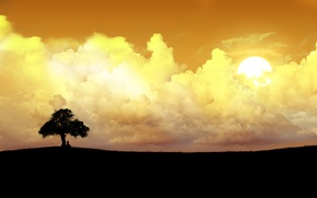 Picture the sun, clouds, lonely tree