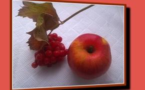 Picture leaves, Apple, still life, autumn, Kalina