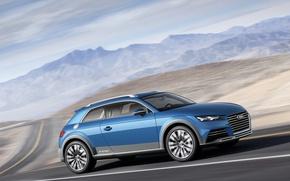 Picture Car, Road, Shooting Brake Show, Audi Allroad Quattro