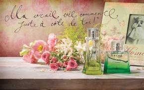 Picture summer, lambre, arche, perfume, amaltea