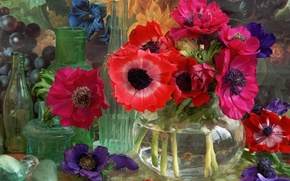 Picture glass, flowers, vase, still life