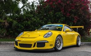 Picture 911, Porsche, yellow, GT3