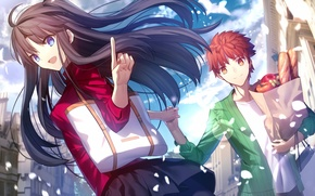 Picture anime, art, Fate/Stay Night, Rin, products, Shiro
