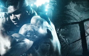 Picture fighter, fighter, mma, ufc, alistair overeem, mixed martial arts, Alistair Overeem