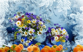Picture frost, bouquet, Chamomile, fruit, peaches, Still life