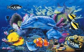 Picture sea, fish, Dolphin, blue, aquarium, beautiful, Christian, Riese