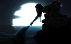 Picture water, girl, birds, Dolphin, the moon