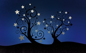 Picture Stars, Trees, Star Leaves, Starleaves