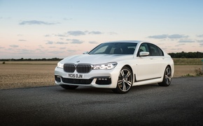 Picture road, field, BMW, white, 730d