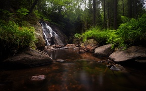 Wallpaper waterfall, forest, river, trees, stones