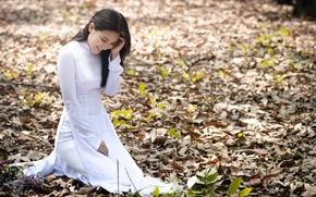 Wallpaper GIRL, FOREST, NATURE, LEAVES, BRUNETTE, ASIAN, AUTUMN, FOLIAGE, Ngoc Lan