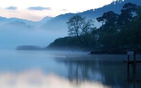 Picture water, morning, fog, Lake