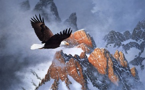 Wallpaper Fire on the Mountain, flight, snow, mountains, winter, eagle, painting, bald eagle, Derk Hansen, clouds