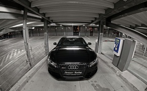 Picture Audi, Black, Logo, The hood, Lights, RS5, Tuning