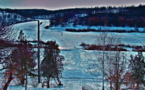 Picture winter, snow, landscape, trees.cold