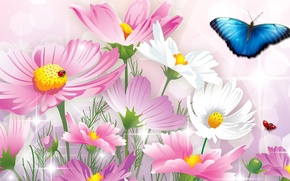 Picture flowers, collage, butterfly, ladybug, insect, postcard, kosmeya
