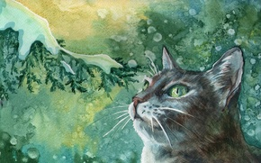 Picture cat, mustache, snow, snowflakes, tree, picture, branch, art, painting, Tomcat, green-eyed, painting, miracles.