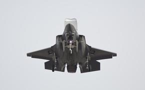 Picture USA, generation, fifth, unobtrusive, fighter-bomber, Lightning II, F-35, promising, Lockheed Martin, F-35, Lightning II, vertical …