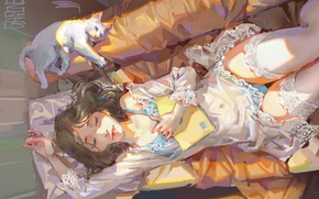 Picture girl, sofa, sleep, negligee, pillow, book, lace, art, gasone, white stockings, white cat
