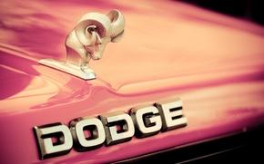 Picture the hood, logo, Dodge, emblem