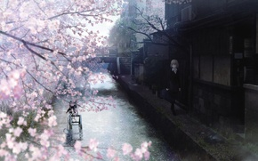 Picture bridge, street, home, Sakura, ladder, channel, Schoolgirl, flowering