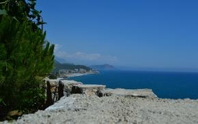 Picture sea, pine, Turkey